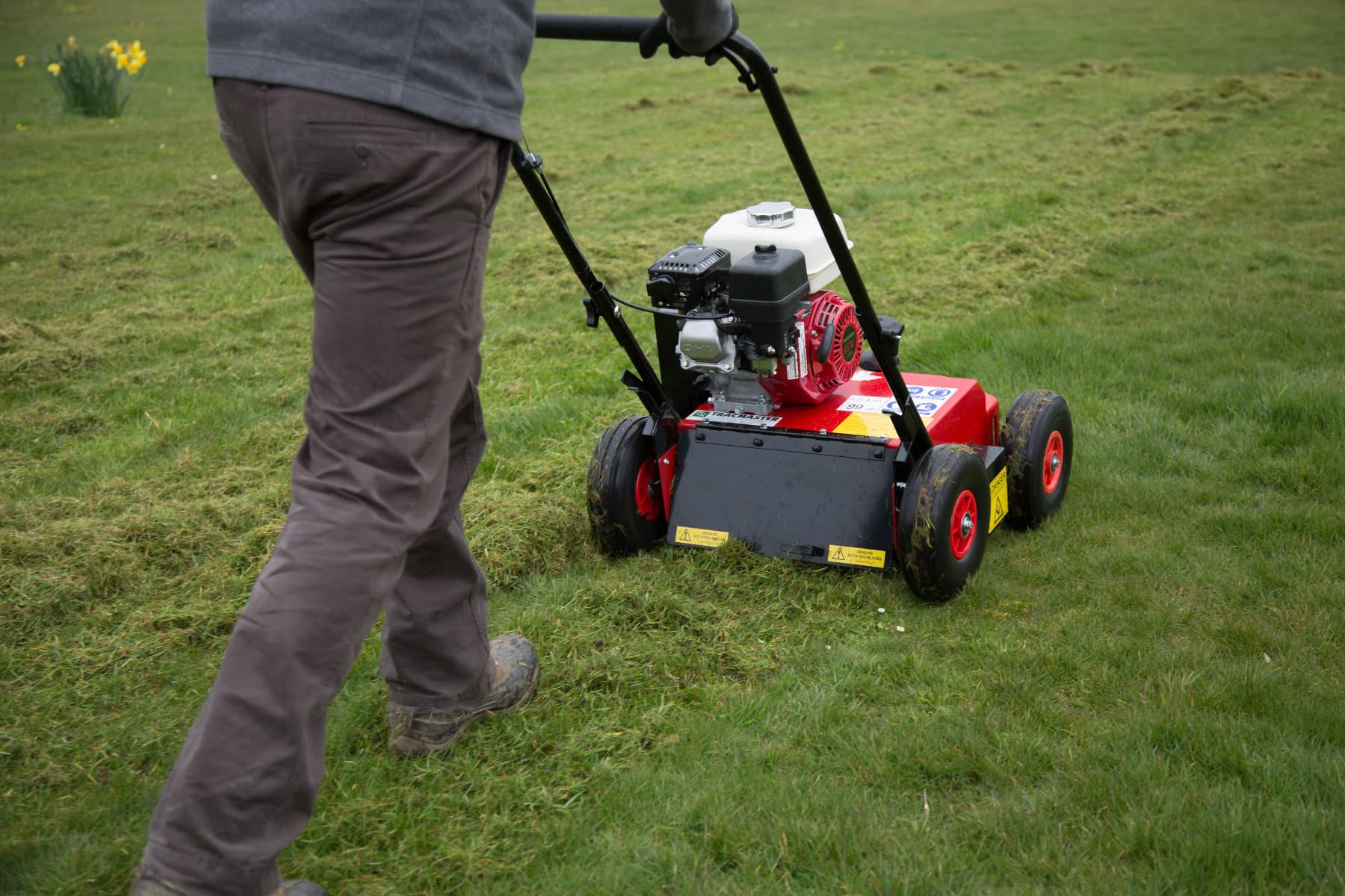Lawn Scarifier Buying Guide
