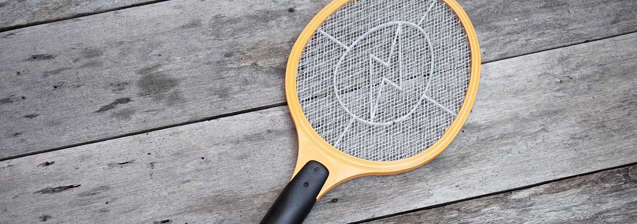 Electric Fly Killer Buying Guide